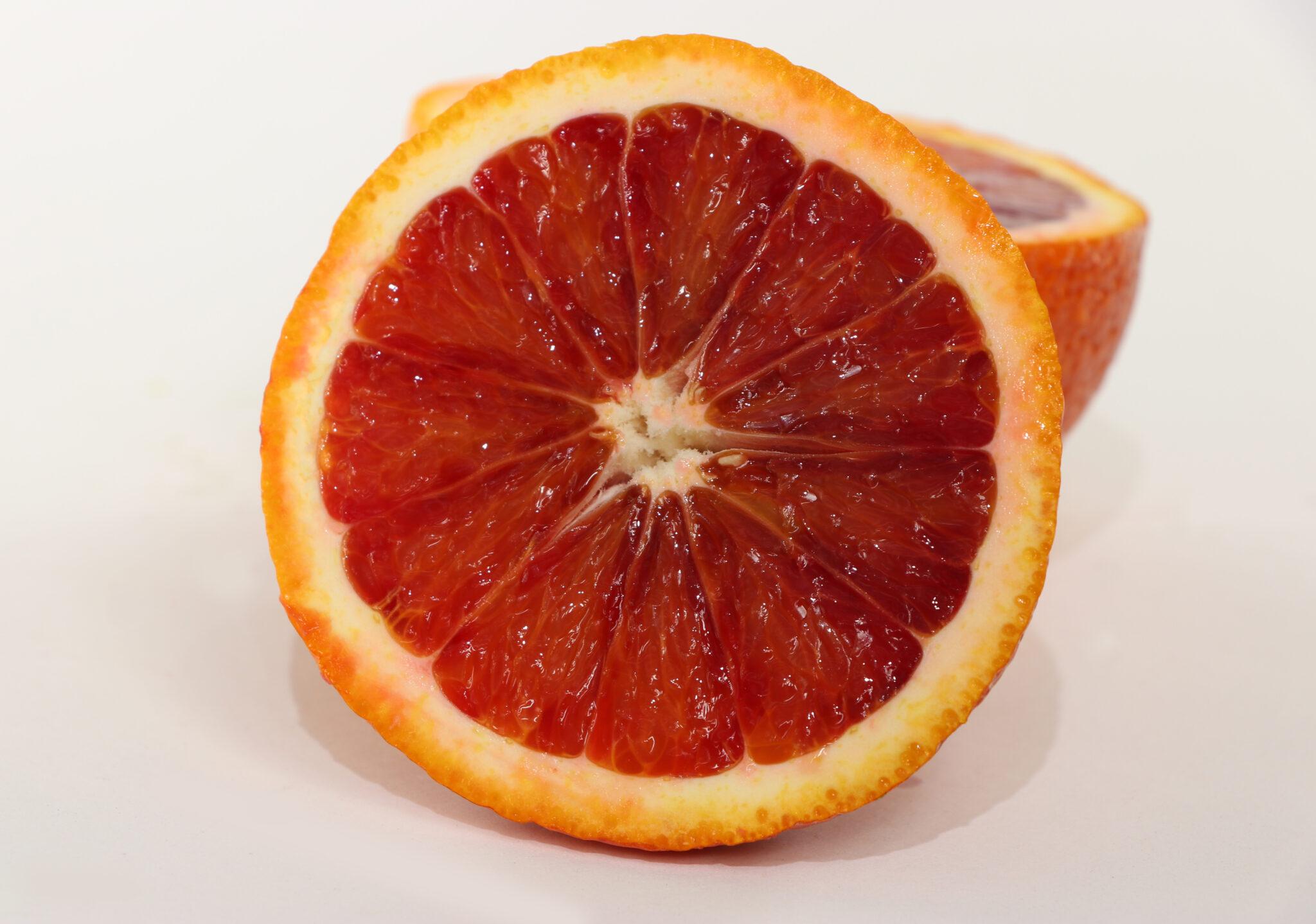 Moro Blood Orange   Orange Tree From Paradise Nursery  Moro Blood Oran...