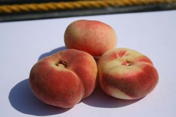 donut_peach_fruit