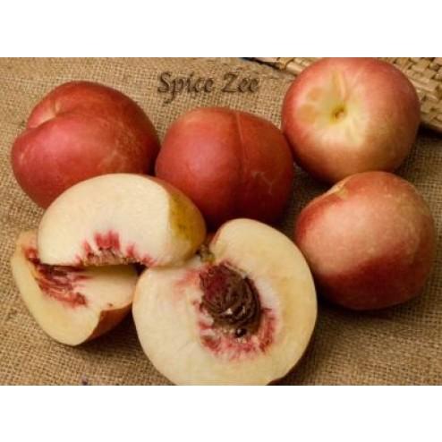 Spice Zee Nectaplum